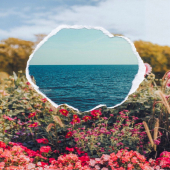 {Mood}⛱ Rêver d'été et d'horizon...Bon lundi!  __________ #lundimotivation #été #summeriscoming #lamer #summermood #beachtherapy #etreamiscollections #etreamischaussures